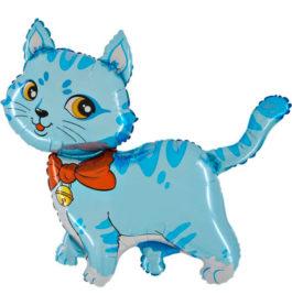 225BGR37 blau Katze