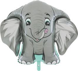 Elephant – HD