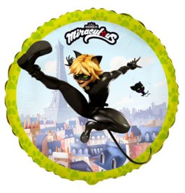 401585FX60 Miraculous – Cat Noir