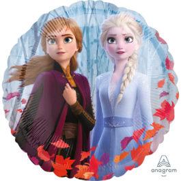 4038602ANS10 Frozen 2