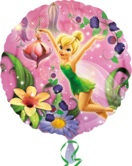 Tinker Bell Character