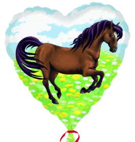 2949102ANS12 Wilde Pferd