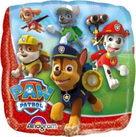3017902ANS10 Paw Patrol