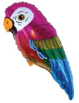 901556FX38 Papagei